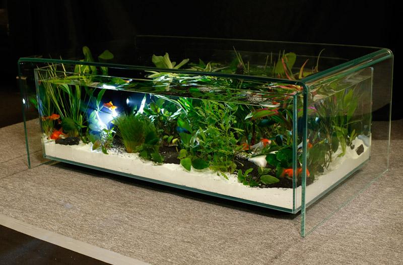 stol-akvarium.jpg