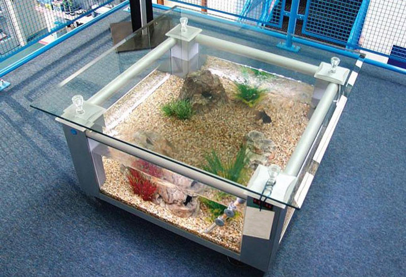 Fish-Tank-Table-Square.jpg