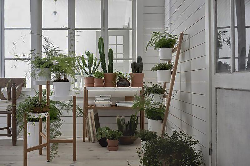 zelenyj-ugolok-na-balkone.jpg
