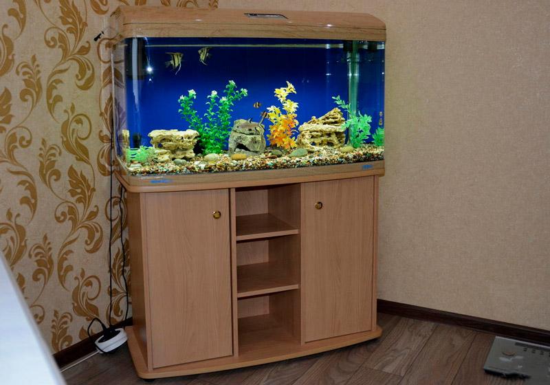 akvarium-jebo-r3100-sostoyanie-novogo-2-9165301.jpg