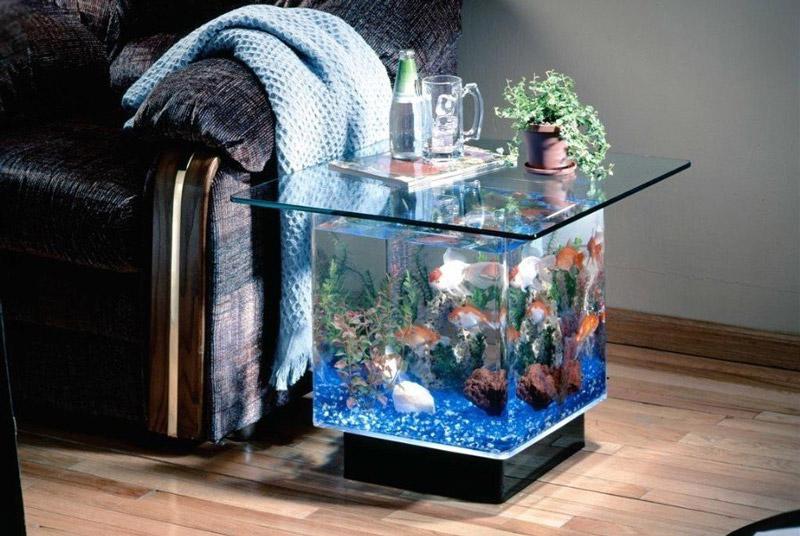 malenkij-akvarium.jpg