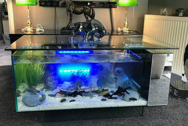 aquarium-coffee-table-for-sale-01.jpg