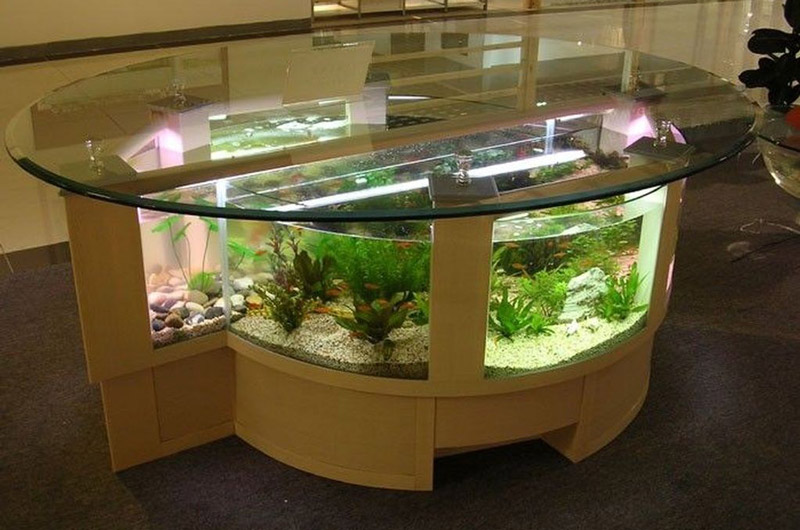 aquarium-feature-on-coffee-table-design-ideas-8.jpg